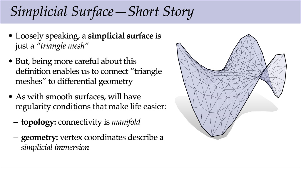 Discrete Surfaces